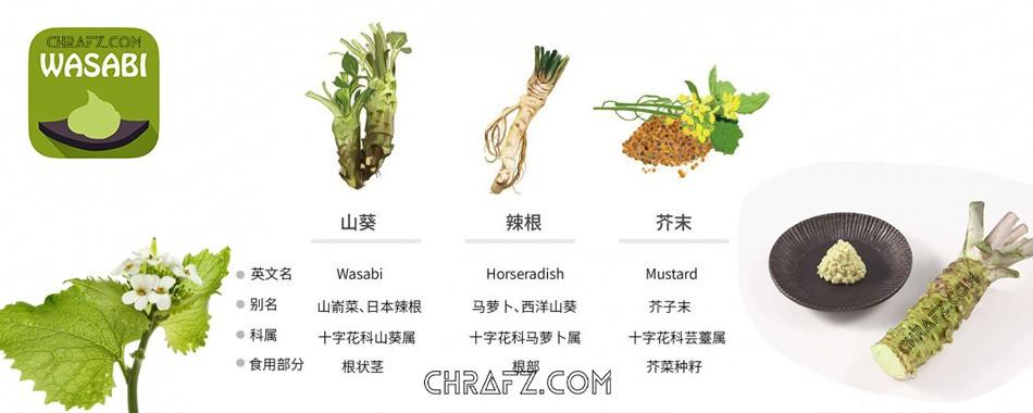 辣根、山葵、芥末的区别是什么?-知说