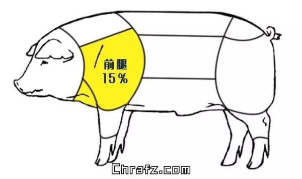 论猪哪个部位的肉最好吃?-知说-张弦先生-chrafz.com